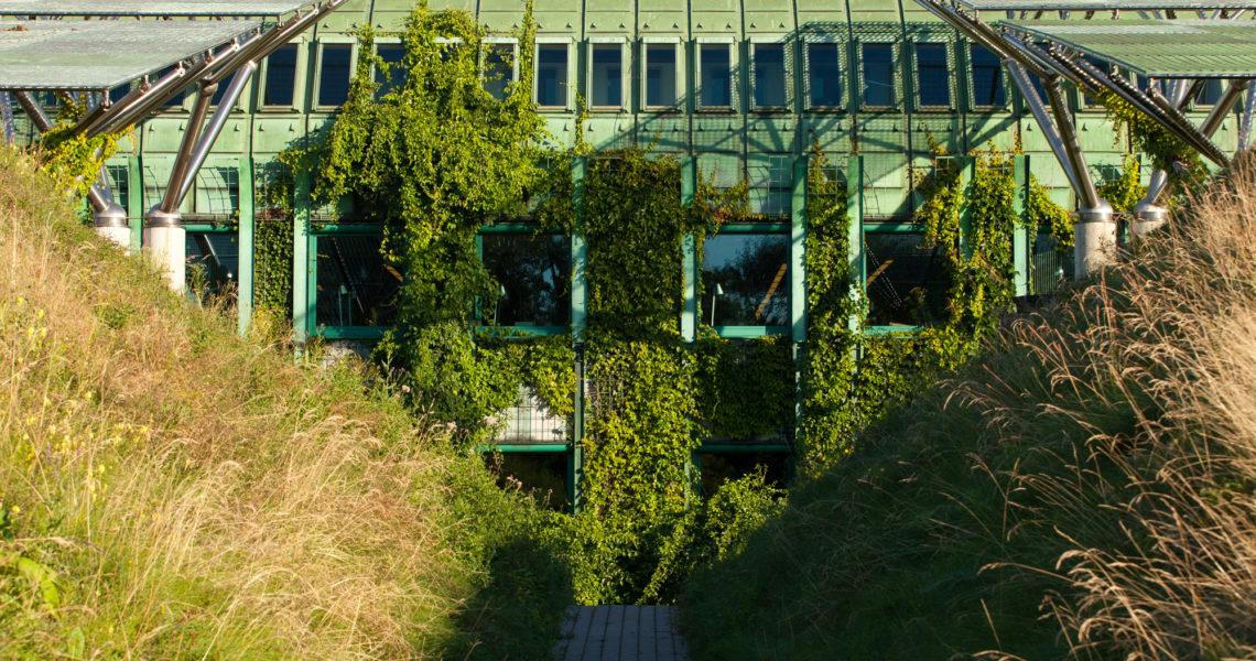 Ogród Biblioteki Uniwersyteckiej w Warszawie