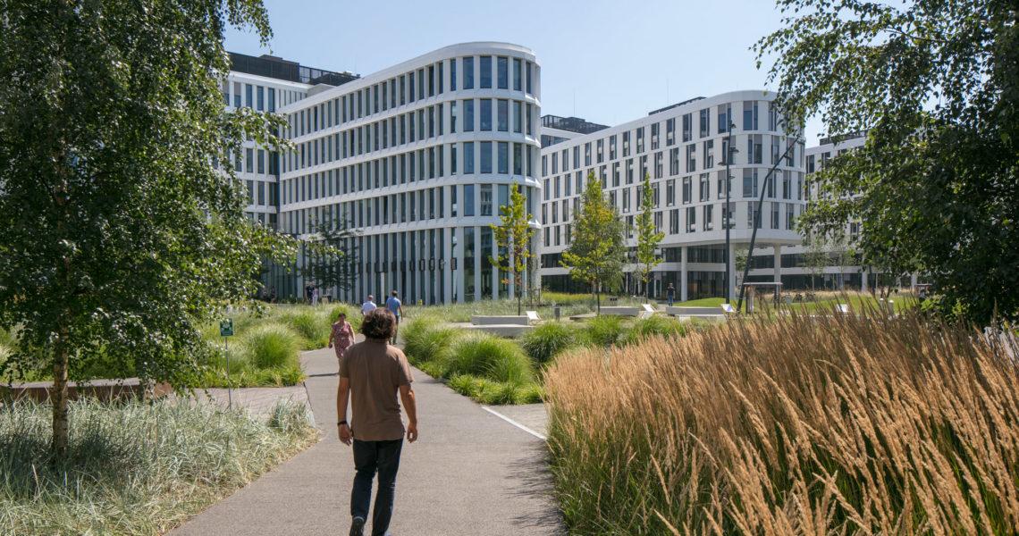 Zagospodarowanie terenu wokół Budynków Business Garden Warszawa